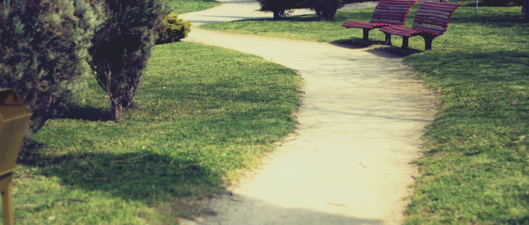 bench-alley-sun